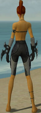 Assassin Kurzick Armor F gray arms legs back.jpg