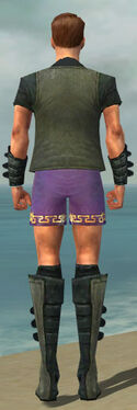 Mesmer Rogue Armor M gray chest feet back.jpg