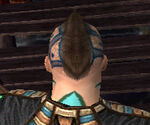 Monk Elite Luxon Armor M gray head back.jpg