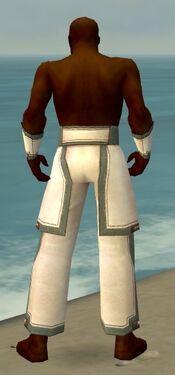 Monk Sacred Armor M gray arms legs back.jpg