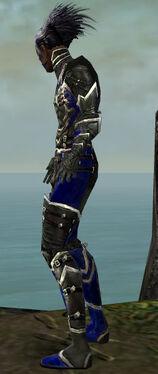 Necromancer Kurzick Armor M dyed side.jpg