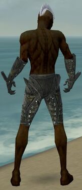 Necromancer Necrotic Armor M gray arms legs back.jpg