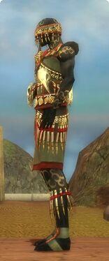 Ritualist Elite Canthan Armor M gray side.jpg