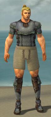 Warrior Tyrian Armor M gray chest feet front.jpg