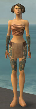 Monk Star Armor F gray arms legs front.jpg