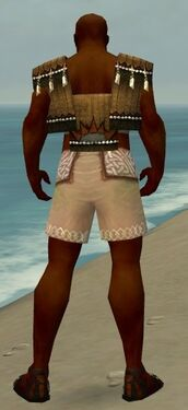 Monk Sunspear Armor M gray chest feet back.jpg