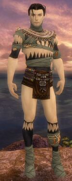 Ritualist Ancient Armor M gray chest feet front.jpg