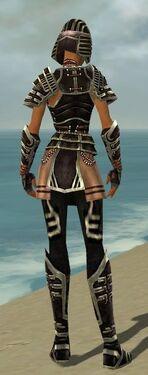 Warrior Ancient Armor F gray back.jpg