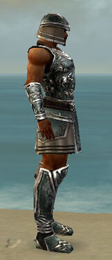 Warrior Istani Armor M gray side.jpg