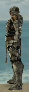 Warrior Sunspear Armor M gray side.jpg