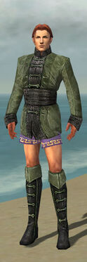 Mesmer Shing Jea Armor M gray chest feet front.jpg