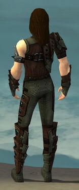 Ranger Obsidian Armor M gray back.jpg
