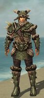 Warrior Elite Charr Hide Armor M gray front.jpg