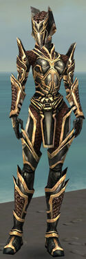 Warrior Elite Kurzick Armor F dyed front.jpg