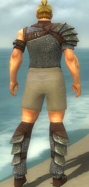 Warrior Krytan Armor M gray chest feet back.jpg