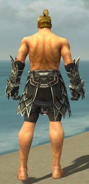 Warrior Silver Eagle Armor M gray arms legs back.jpg