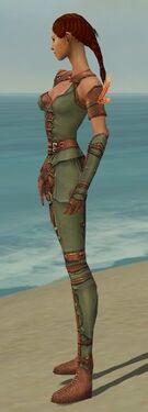 Ranger Ascalon Armor F gray side alternate.jpg