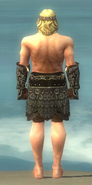 Warrior Canthan Armor M gray arms legs back.jpg