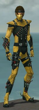 Assassin Seitung Armor M dyed front.jpg