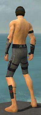 Assassin Shing Jea Armor M gray arms legs back.jpg