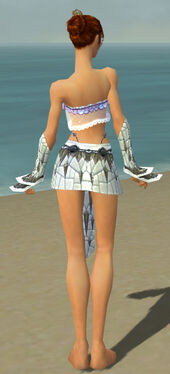 Elementalist Elite Iceforged Armor F gray arms legs back.jpg