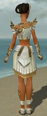 Paragon Ancient Armor F dyed back.jpg