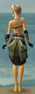 Ritualist Elite Imperial Armor F gray arms legs back.jpg