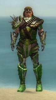 Warrior Deldrimor Armor M dyed front.jpg
