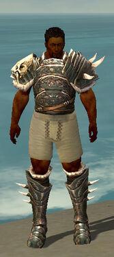 Warrior Norn Armor M gray chest feet front.jpg