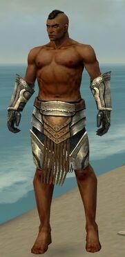 Warrior Sunspear Armor M gray arms legs front.jpg