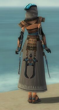Dervish Monument Armor F gray back.jpg