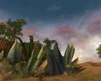 Plains of Jarin.jpg