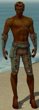Ranger Ascalon Armor M gray arms legs front.jpg