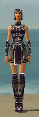 Warrior Istani Armor F dyed front.jpg