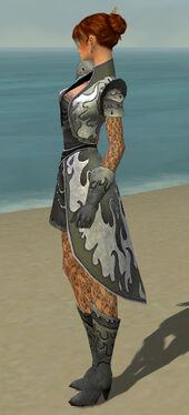 Elementalist Elite Flameforged Armor F gray side.jpg