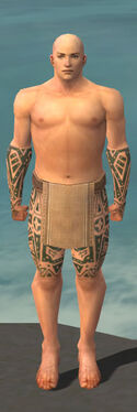 Monk Star Armor M gray arms legs front.jpg