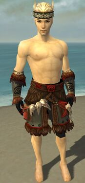 Ritualist Norn Armor M gray arms legs front.jpg