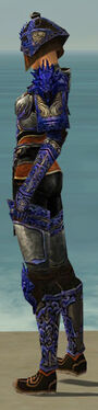 Warrior Elite Canthan Armor F dyed side.jpg