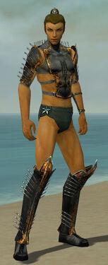 Assassin Exotic Armor M gray chest feet front.jpg