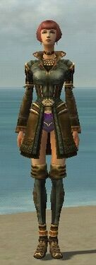 Mesmer Ancient Armor F gray chest feet front.jpg