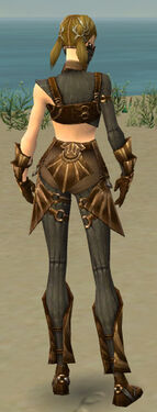 Ranger Sunspear Armor F gray back.jpg