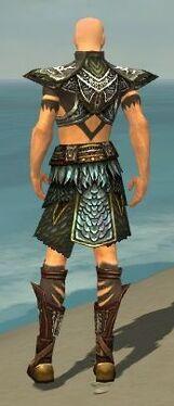 Ritualist Deldrimor Armor M gray back.jpg