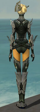 Assassin Imperial Armor F gray back.jpg