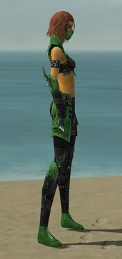 Assassin Luxon Armor F dyed side.jpg
