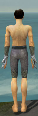 Elementalist Iceforged Armor M gray arms legs back.jpg