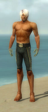 Mesmer Elite Canthan Armor M gray arms legs front.jpg