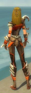 Ranger Asuran Armor F dyed back.jpg