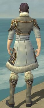 Elementalist Norn Armor M gray chest feet back.jpg
