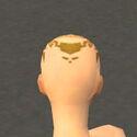 Monk Sunspear Armor F dyed head back.jpg