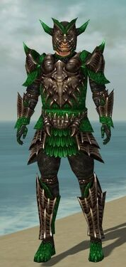 Warrior Elite Dragon Armor M dyed front.jpg